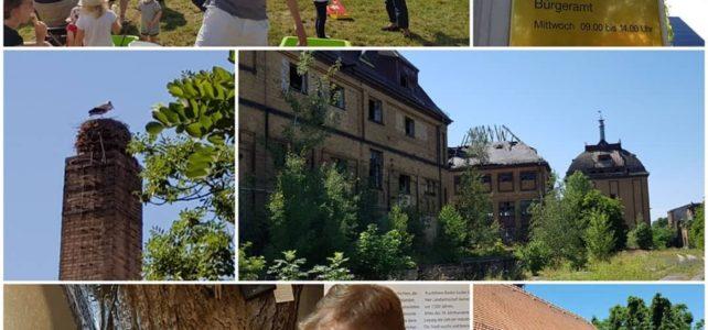 Von Eichhörnchen, Fluglärm und Romanen – Wahlkreistag in Lützschena-Stahmeln